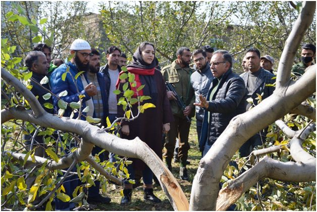 DC Budgam tours Char-i-Sharief, takes stock of damages to horticulture sector