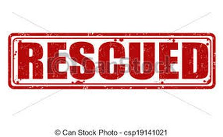 District Admin Shopian rescues 41 stranded passengers on Mughal road